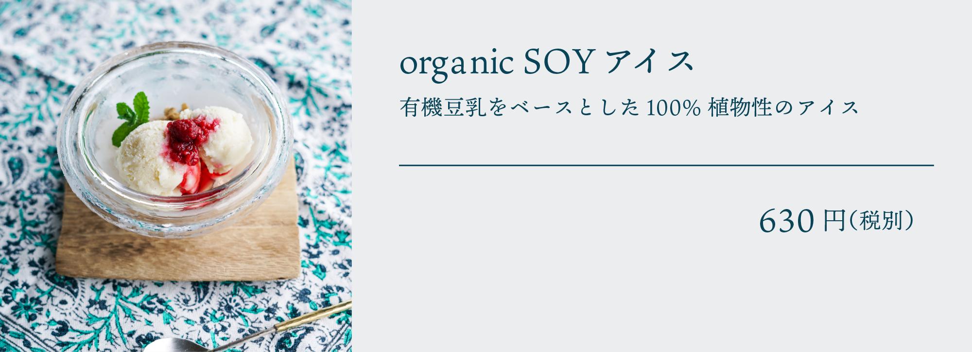 organic SOY アイス